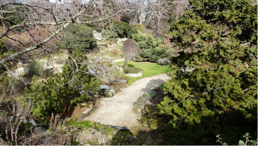 Le jardin alpin - Jardin de rocaille et jardin alpin enidees inspirantes ...